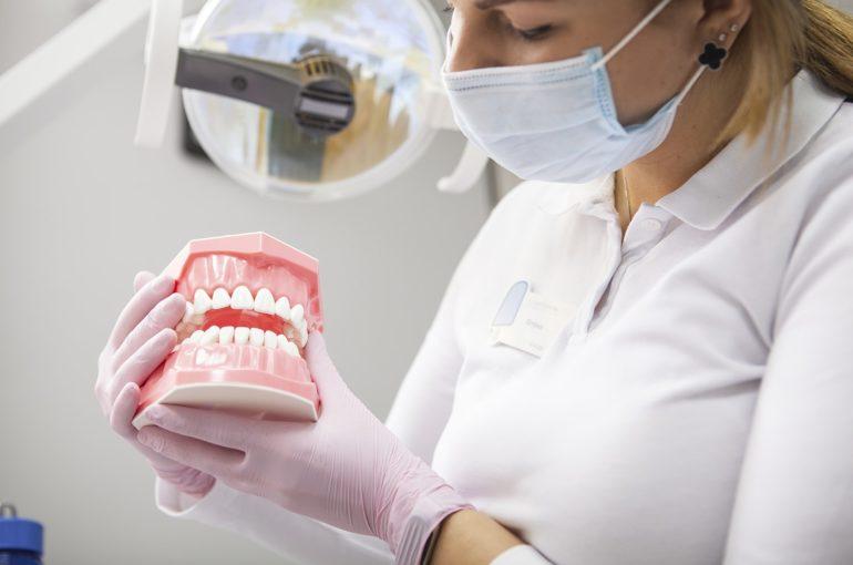 numeracion dientes
